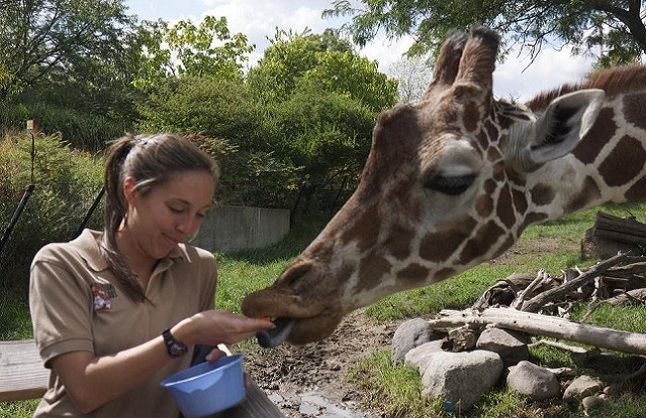 Zoo Keeper For A Day Experience