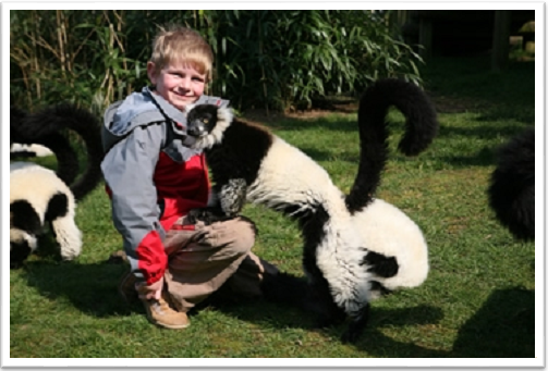 Junior Zoo Keeper Experience Woburn
