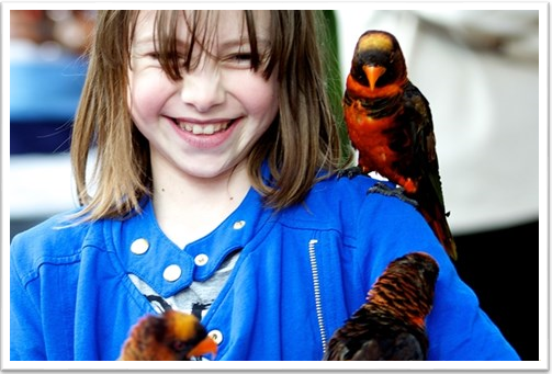 Junior Zoo Keeper for a Day Woburn