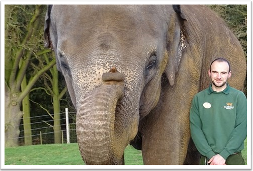 Zoo Keeper For a Day Woburn