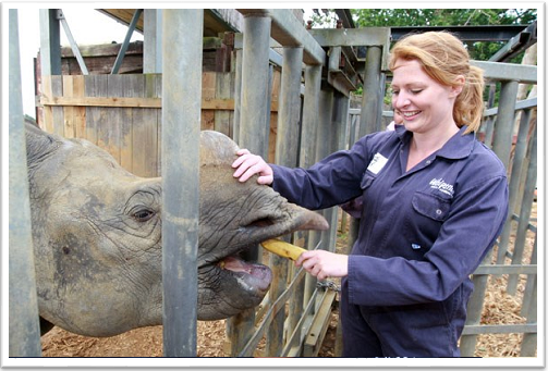 Zoo Keeper for a day experience rhino