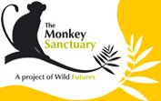 Primate Keeper Experiences at The Monkey Sanctuary