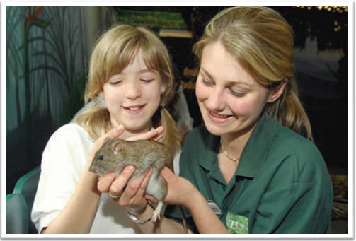 Zoo Keeper For A Day at Bristol Zoo Junior